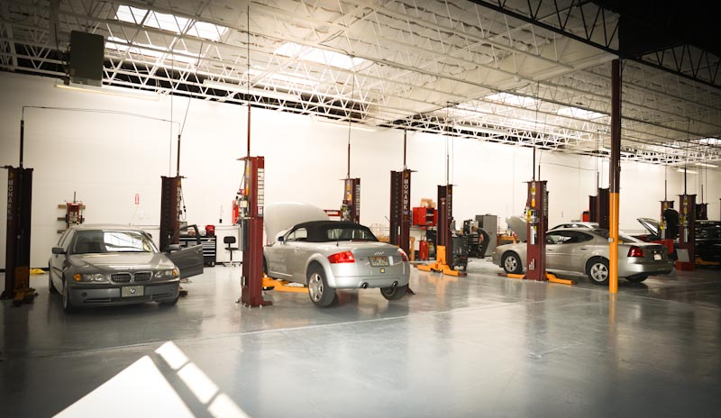Service Lane with Lifts and busy professional technicians